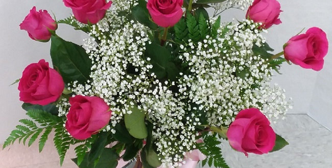 Hot pink roses in a vase with baby's breath