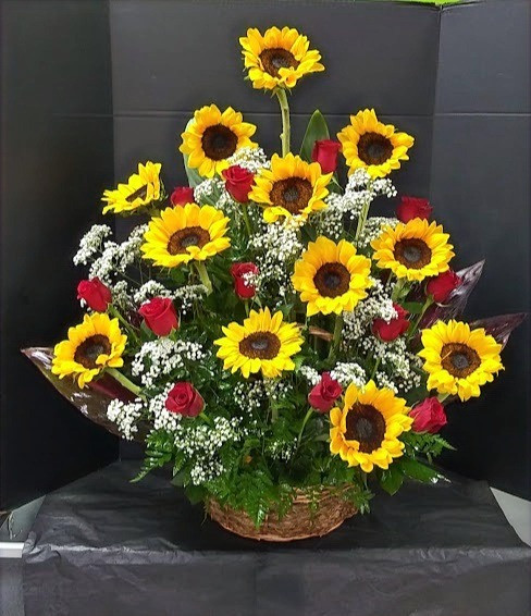 Sunflowers ─ What They Symbolize and When to Give Them