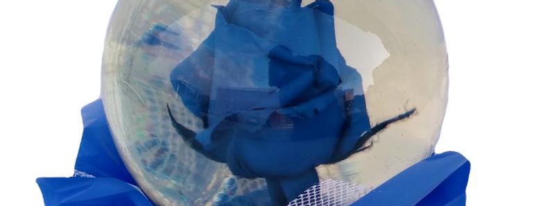 Real blue rose in a crystal globe, beautiful rose in a crystal glass ball