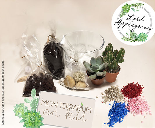 kit terrarium enfants lord applegreen