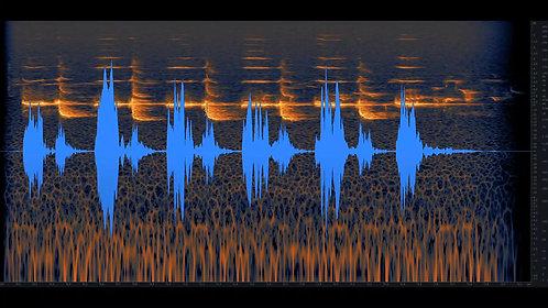 Bird Whistling, Single, 01-03