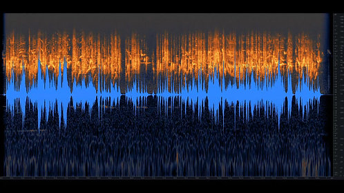 Bird Whistling, Chicks, Multi, 01-01