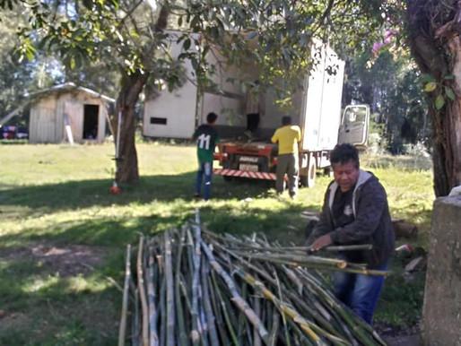 Bambus para a Aldeia Guarani