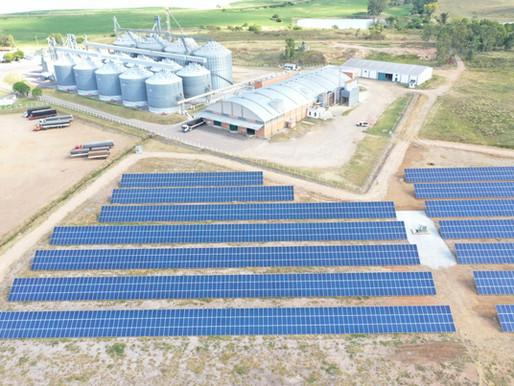 Cerealista Coradini inicia comercialização de arroz processado com energia solar