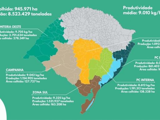 Safra de arroz com produtividade recorde no RS