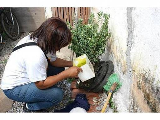Aceguá entra na lista de municípios infestados pelo mosquito Aedes aegypti