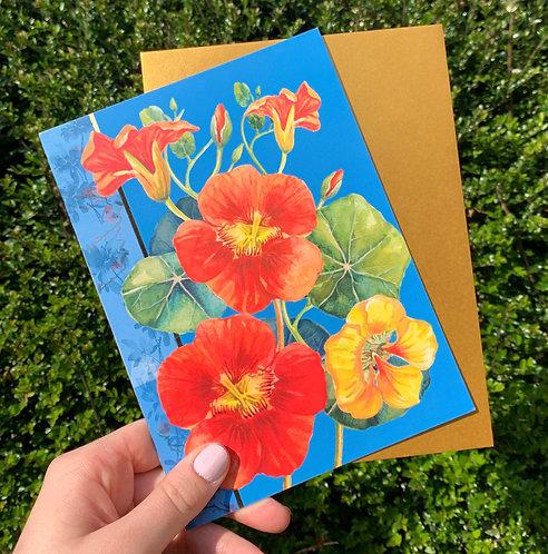 Pack of 6 Summer Nasturtiums Blank Card