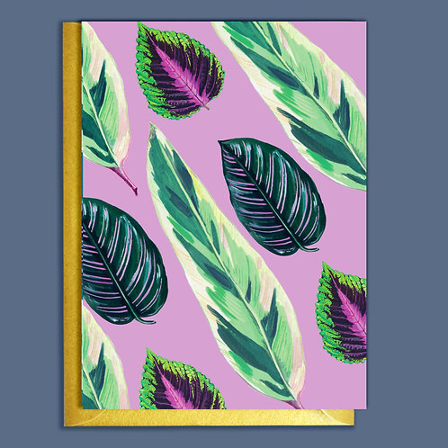 PACK of 6 Lilac Houseplants Pattern Card
