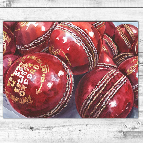 Cricket Ball Card