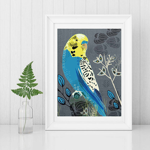 PACK of 2 Budgie Print