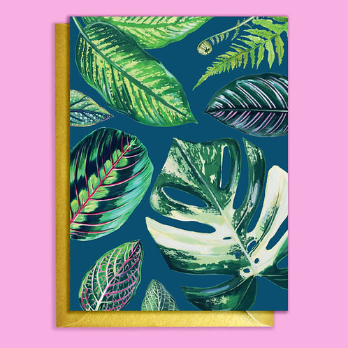 PACK of 6 Navy Mixed Houseplants Card