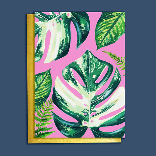 PACK of 6 Cheeseplant Houseplants Card