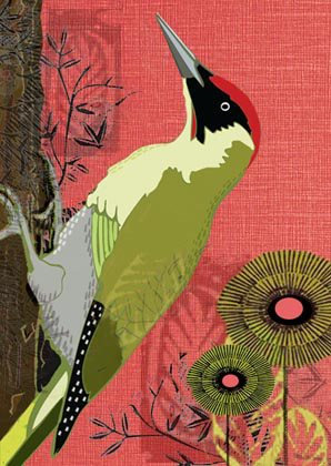 Green Woodpecker Greetings Card