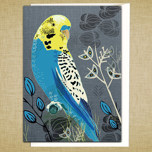 PACK of 6 Blue Budgie Card