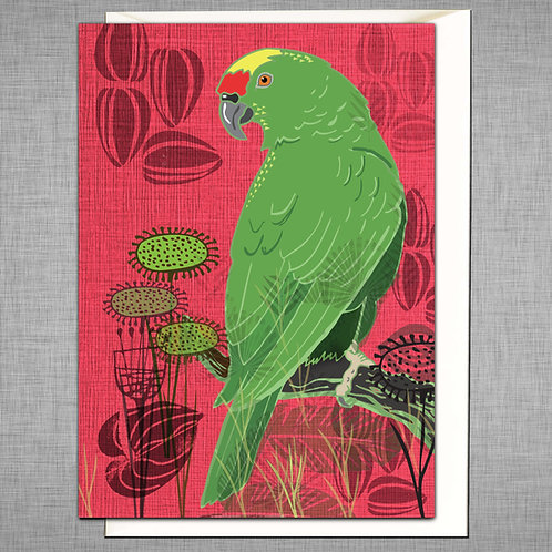 PACK of 6 Green Parrot Card