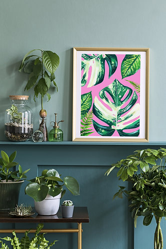 Cheese plant Houseplant Print