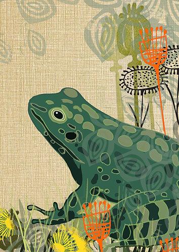 Frog Greetings Card