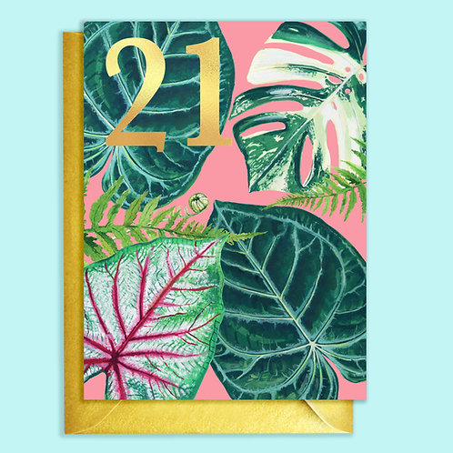 Pack of 6 21st Birthday Houseplants card with Gold detail