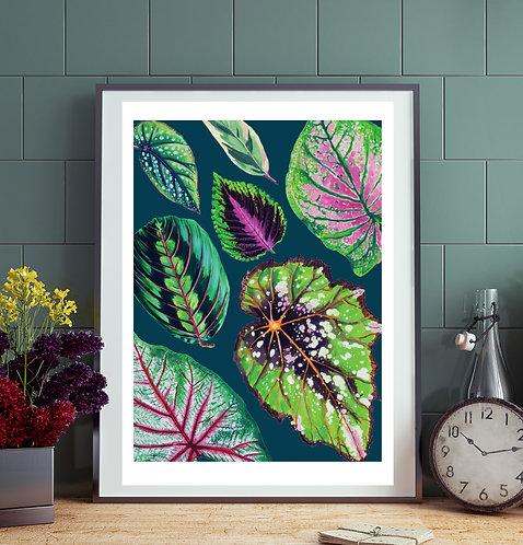 Mixed Teal Houseplant Print