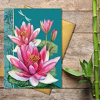 blank lily photo.jpg