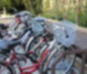 31.велосипеды.jpg