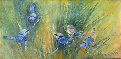 Blue wrens painted in acrylic on canvas
