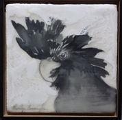 Cockatoo Male encaustic multi media on p