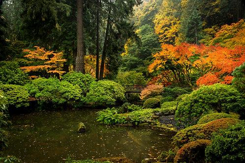 Order #ST009 Japanese  Gardens in Portland, Oregon