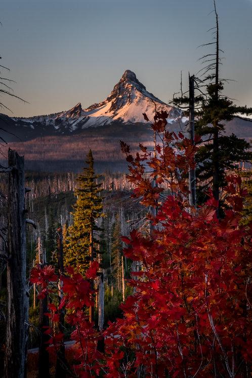 Order #SM002 Mt. Washington, Oregon