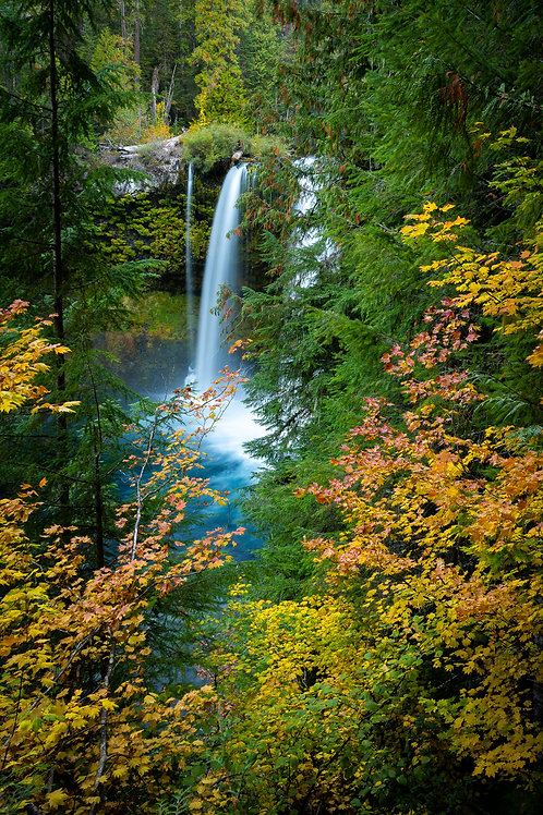 Order #SW004 Mckenzie River, Oregon