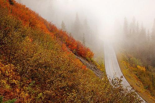 Order #ST001 Mt. Rainier National Park, Washington