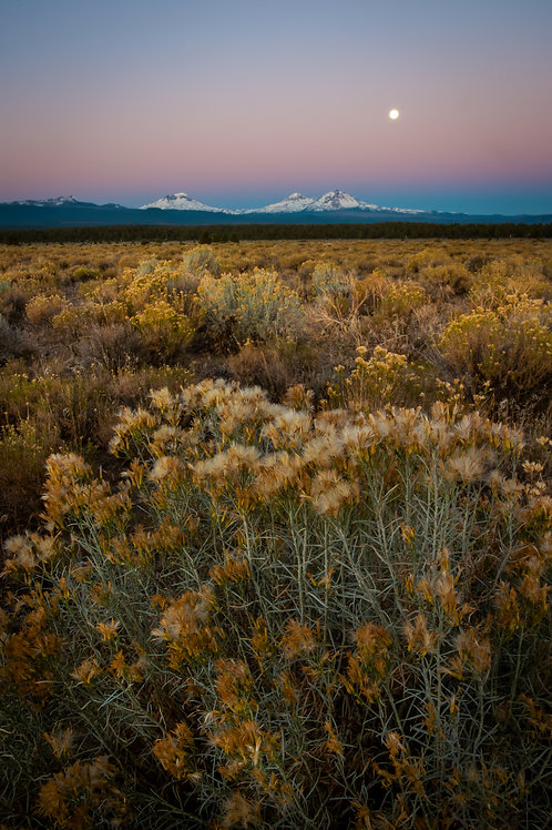Order #SM001 Three Sisters, Oregon at Sunrise