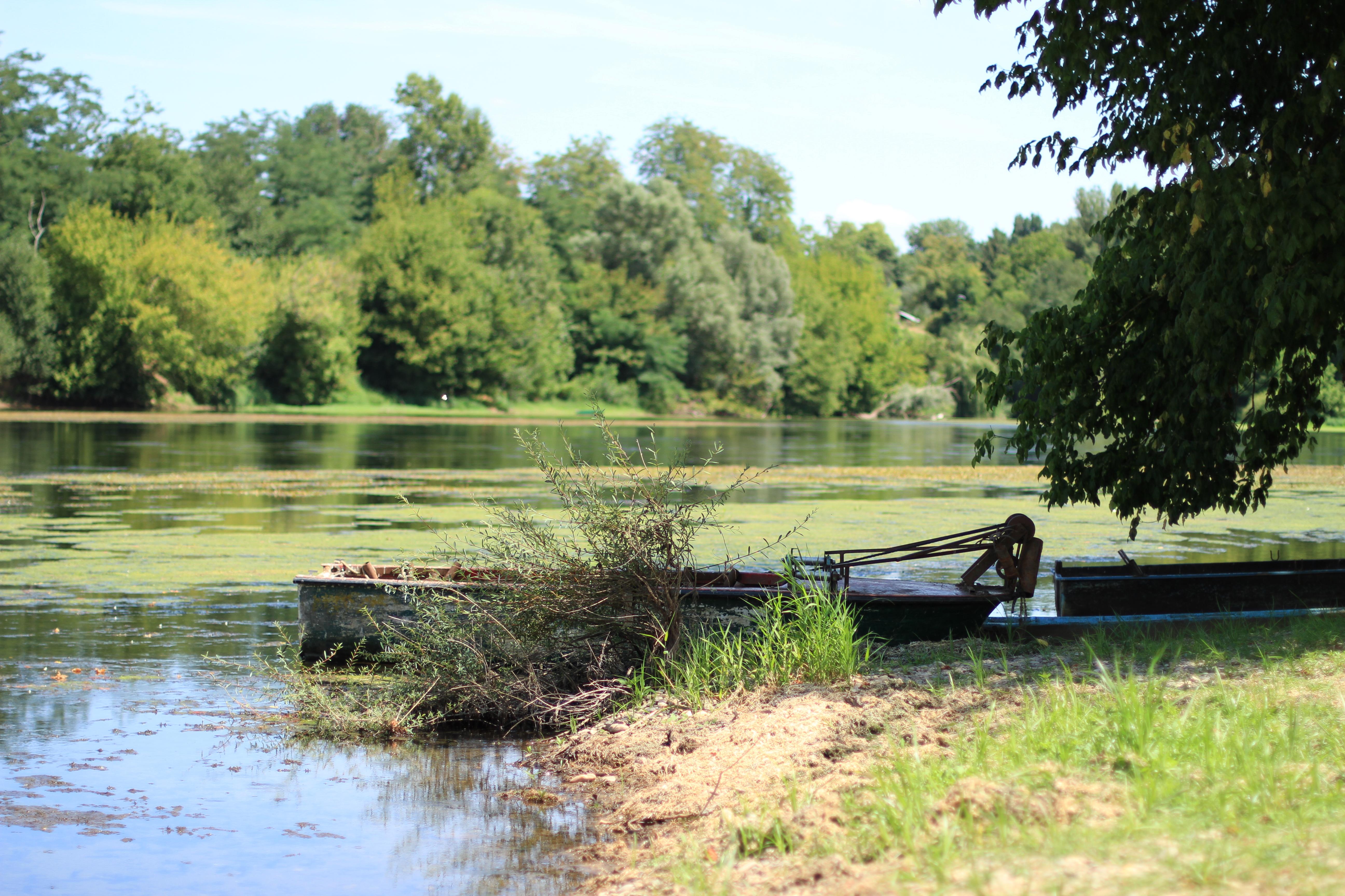 Rivière de la Dordogne
