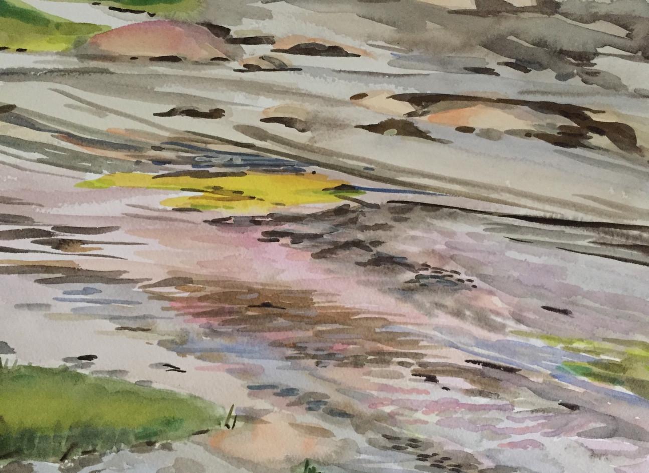 Low Tide, Sprucehead Island