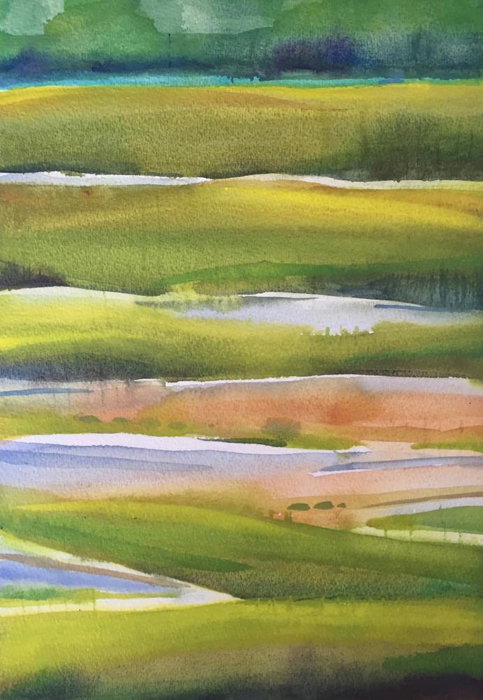 Weskeag Marsh