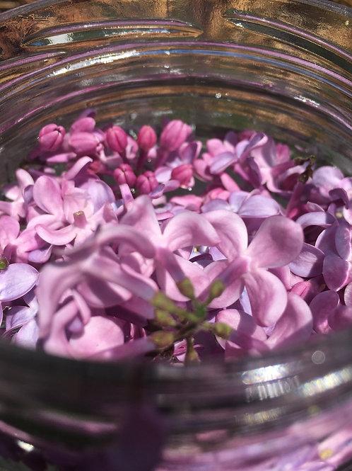 Lilac Skin Beauty Barrier * 1oz * Anti aging