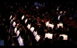 Benjy conducting Harvard College Opera's orchestra in the Magic Flute