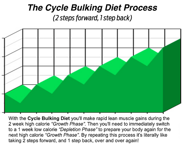 Gaining Weight With Cycle Bulking Diet