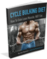 Cycle Bulking Diet Program PDF