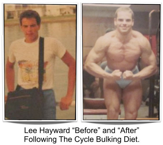 Lee Hayward Before & After Cycle Bulking Diet