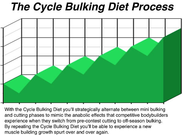Cycle Bulking Diet Process