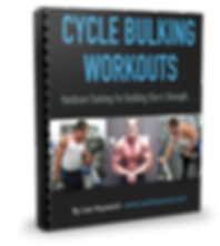 Cycle Bulking Workout Book