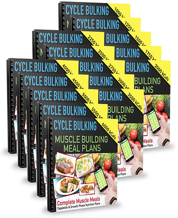 Cycle Bulking Muscle Building Meal Plans