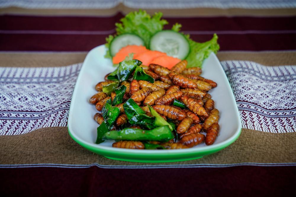 Plato tailandés con gusanos se seda y hojas de limón fritos