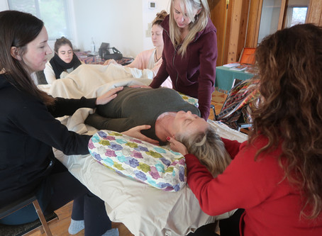 Intensive Reiki Level I with Sadhana