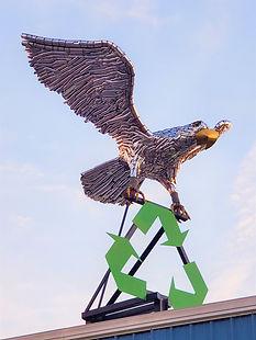 Eagle cc.jpg
