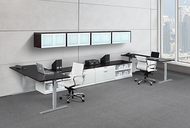 SS34: 2 person Electric Stand-Up Workstation
