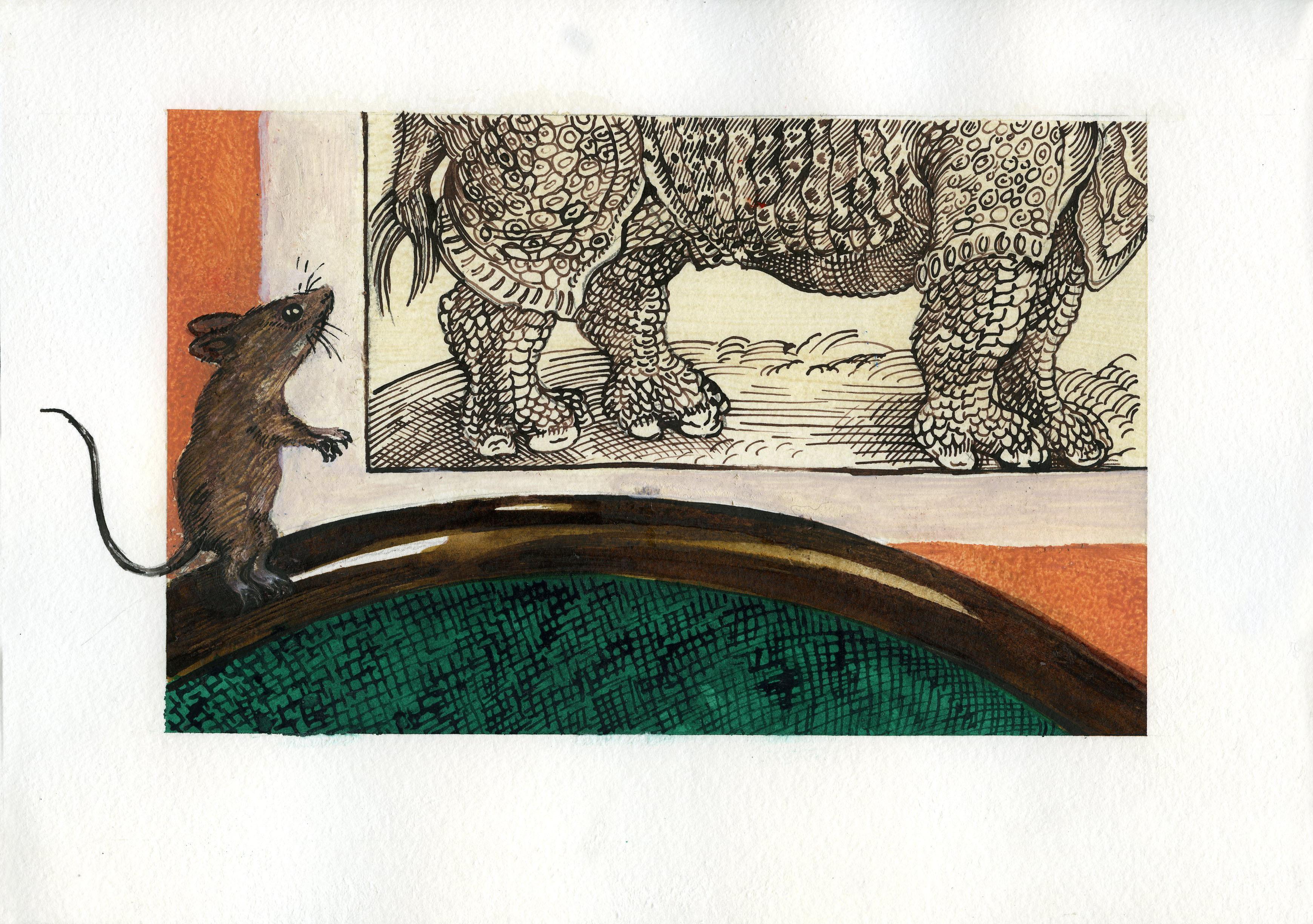 Moz and Durer's Rhino