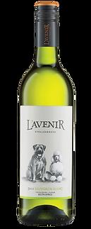 L'AVENIR-FAR-&-NEAR-SAUVIGNON-BLANC.png
