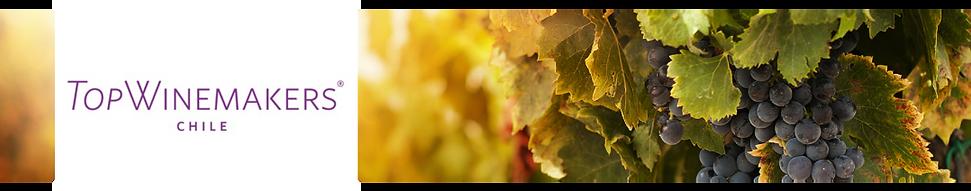 Top-Wine.png